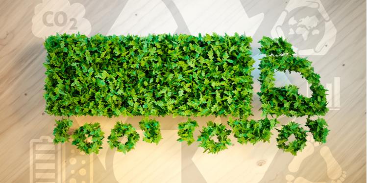 Freight Sustainability Blog