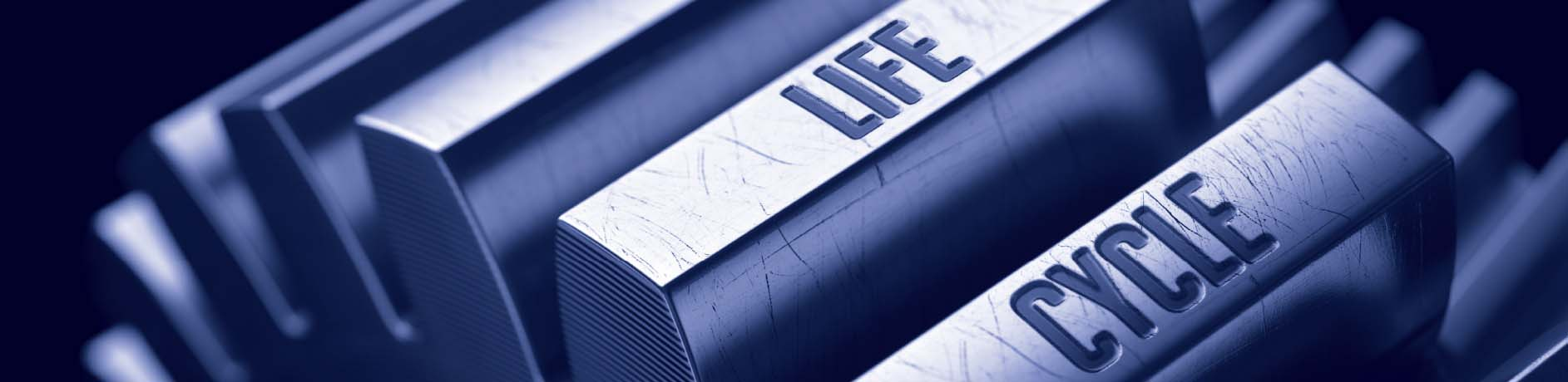 Life_Cycle_Banner_Image_1885x460.jpg